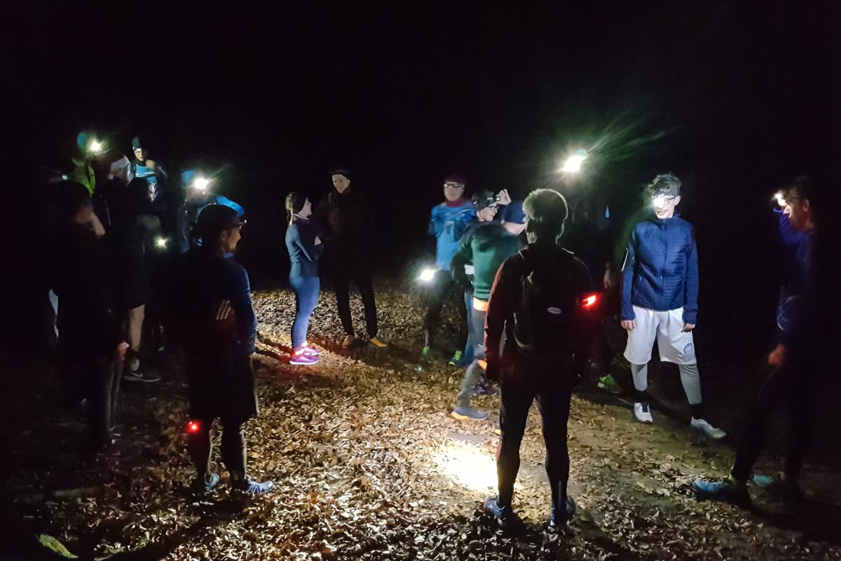 Nightrun durch die Dresdner Heide
